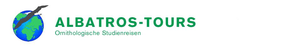 Albatros-Tours Kopf
